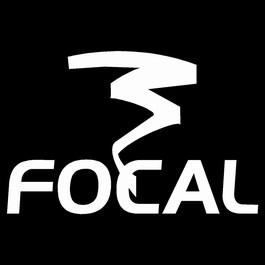 mini-FOCAL